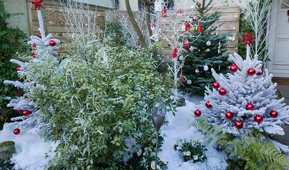 Comment décorer un jardin enneigé pour Noël ?