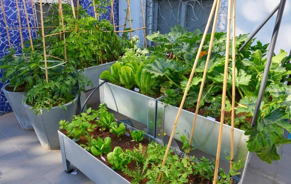 Les principales raisons d'installer une jardinière sur pieds chez soi