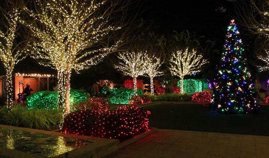 Quels sapins installer dans son jardin pour une déco de Noël au top ?